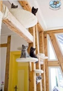 Comment fabriquer un arbre à chat soi-même?